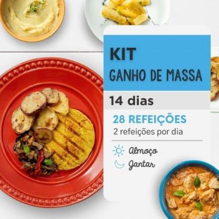 Ganho de Massa 14 dias Almoço e Jantar - Da Mamãe Fitness
