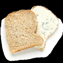 pão de aveia com pasta de ervas