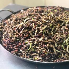 arroz alho poro shimeji integral